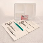 Sterile, Incision and Drainage Tray